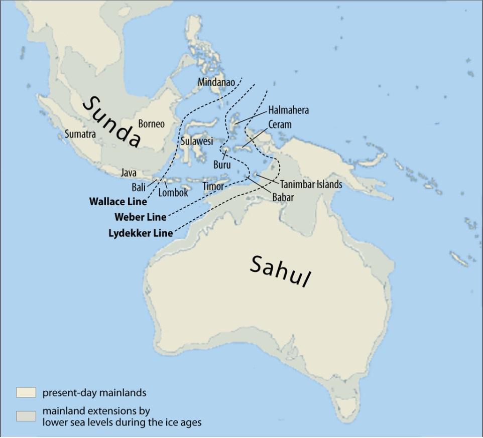16-5. 30,000年前~35,000前に遡...